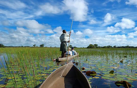 Okavango_Delta_071.jpg