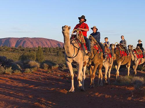 Uluru-Camel-Tours-4_1150x860pxl_edited.j