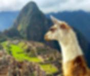 wysiwyg1536790537542-peru-travel-guide-a