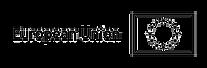 logo_UE_rgb-3_edited.png