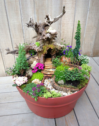 A Fairy Garden for Mother's Day