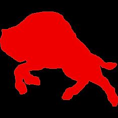 Red Buffalo