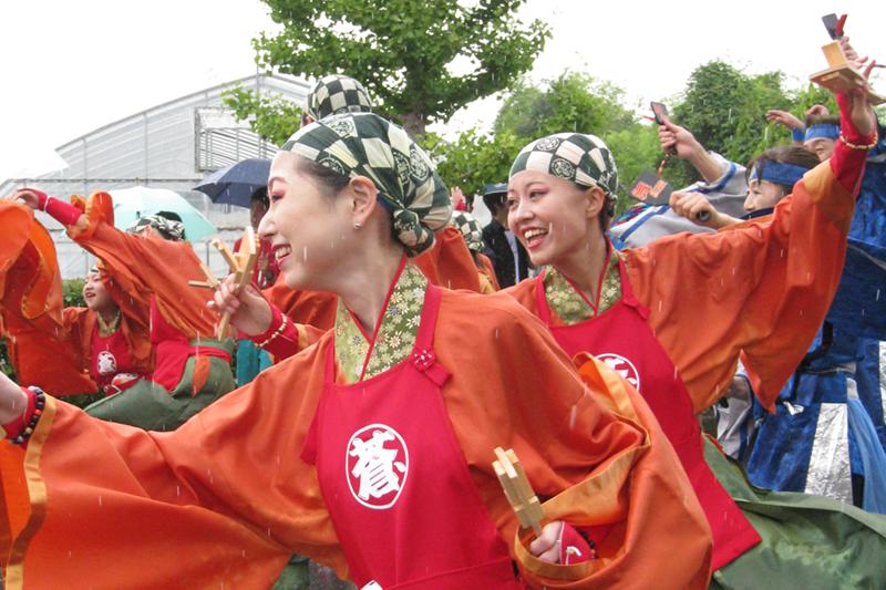 20080810_よさこい豊里004