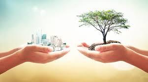 Estratégias do empreendedorismo sustentável