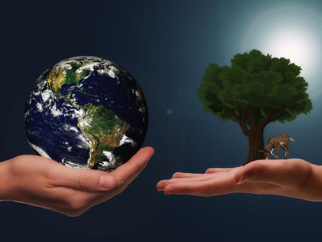 O que é ESG e como esse tema está ligado aos ODS?