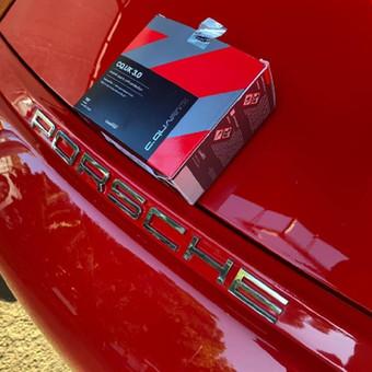 Vega Baja Auto Paint