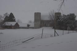2010-02-24   16-38-12  IMG  3493