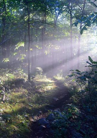 sunrise meditation + chanting
