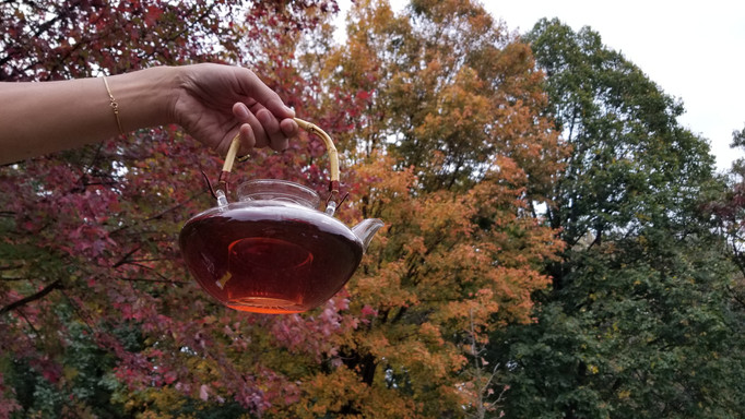 When asked about seasonally appropriate tea, Tim noted how syncing the color of the tea with the season often works.