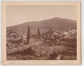 large-photo-cherry-mountain-slide_1_7897