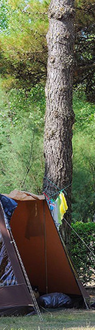 Camping_Ninfedelmare04.jpg