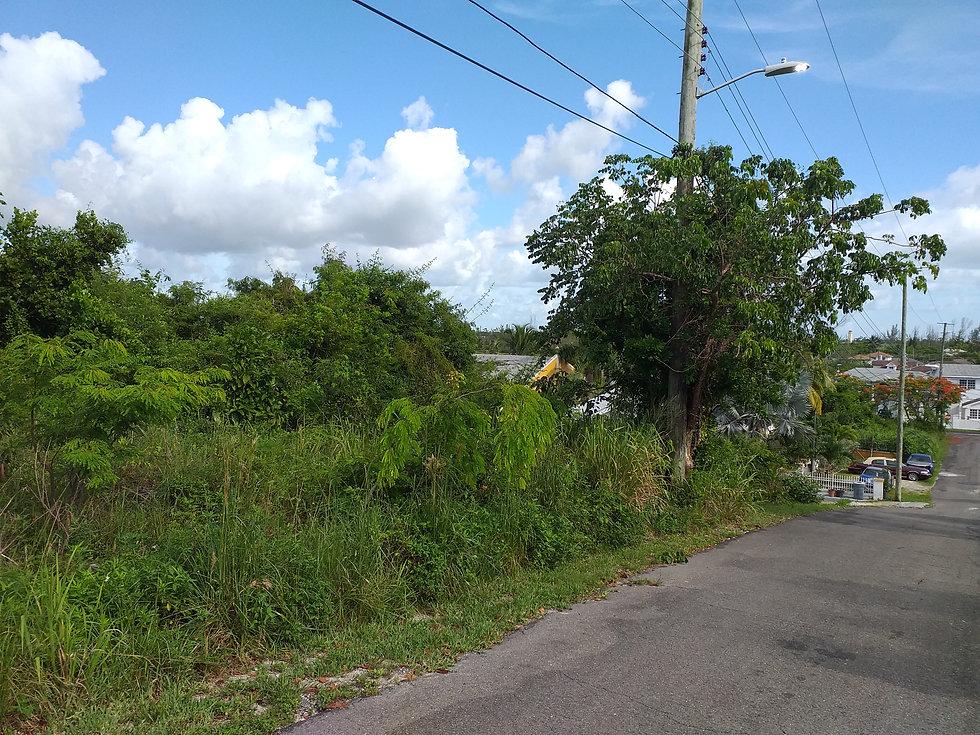 Tropical Gardens Lot 1
