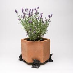 Blue Tit Pot Feet £22.99