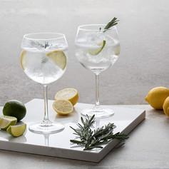Dartington Crystal Pair of Gin Copas £19.99