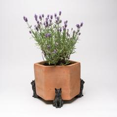 Sitting Cat Pot Feet £22.99