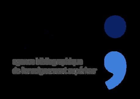 Theses.fr et Docteurs SPI