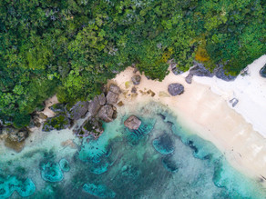 沖縄県のSDGsへの取り組み施策を7つご紹介!〜希望と活力にあふれる豊かな島へ〜