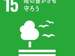 SDGs目標15「陸の豊かさも守ろう」から学ぶ、破壊されている生物の多様性