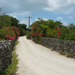 SDGsと関わりの深い、沖縄21世紀ビジョンとは?〜多様な能力を発揮し、未来を拓く島を目指すため〜