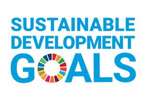 SDGsとは?SDGsの歴史や基礎情報、ワークショップのご紹介について