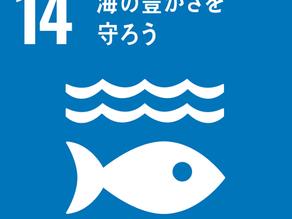 SDGs目標14「海の豊かさを守ろう」から学ぶ海洋ゴミの深刻さとは?