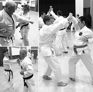 Karate 3.jpg