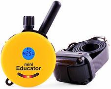 Educator E-Collar.jpg