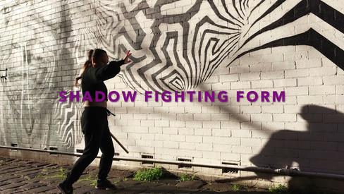 Shadow Fighting Form