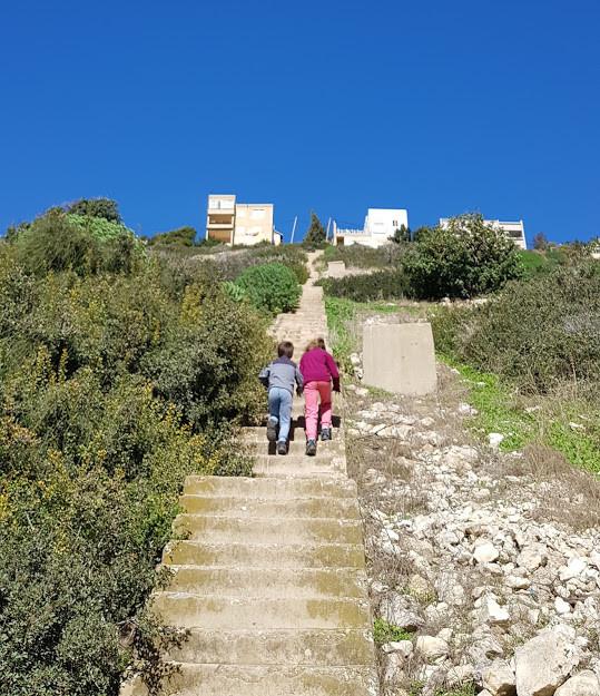 מדרגות מנחל שיח לכבביר במסלול טיול בחיפה