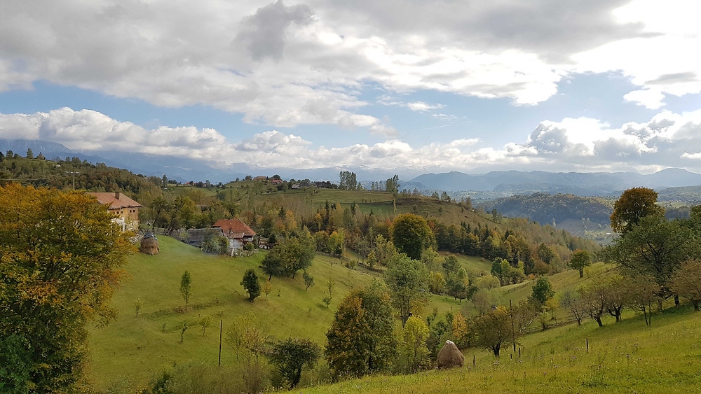 נוף רומני באזור הכפר מאגורה ליד בראן