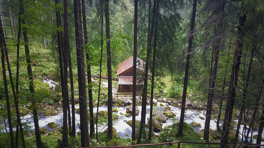 טיול עם ילדים במפלי גולינג באוסטריה