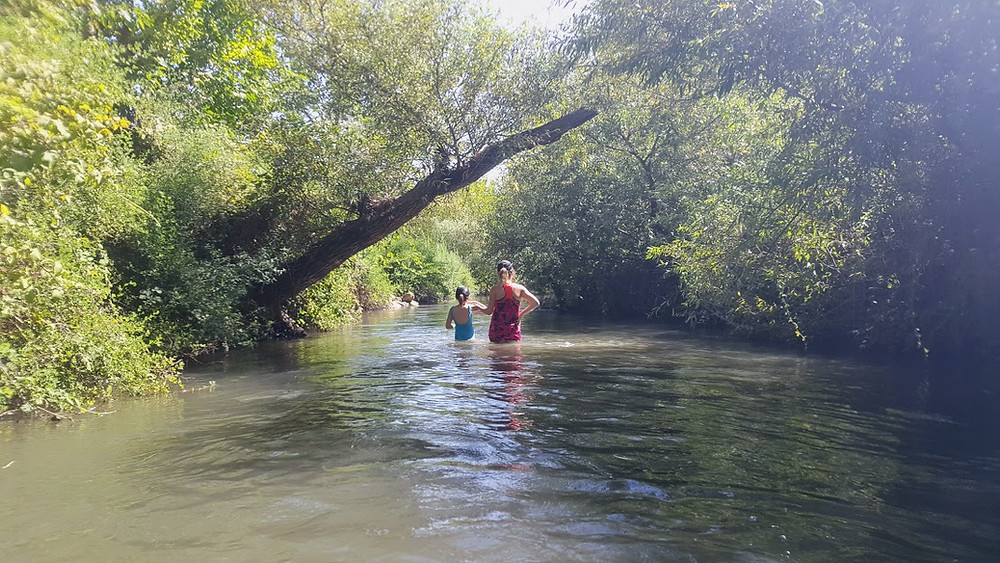 טיול מים בבניאס התחתון ליד שדה נחמיה