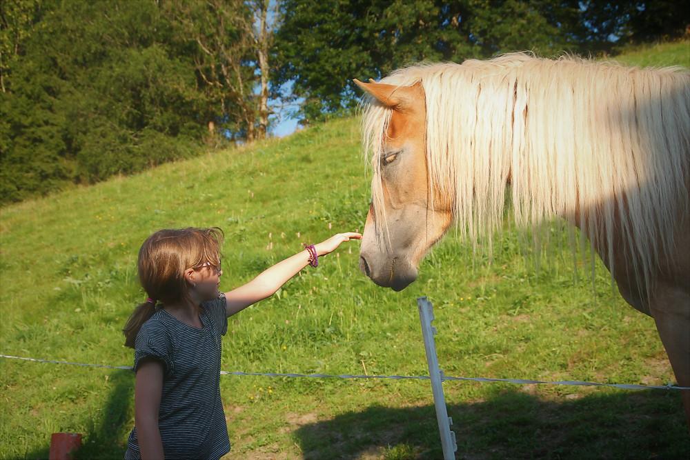 לינה בחווה עם ילדים באוסטריה