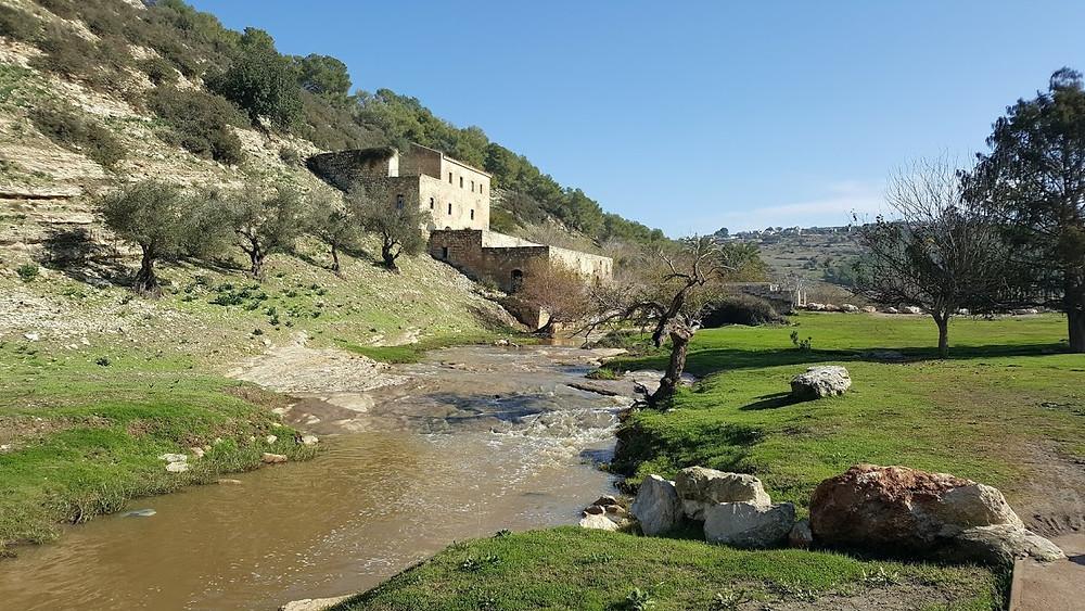 טחנת הנזירים בנחל ציפורי