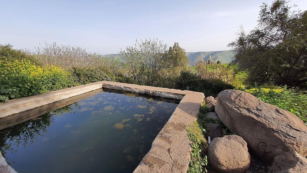 """עין אי""""ה מעיין ובריכה בדרום רמת הגולן"""