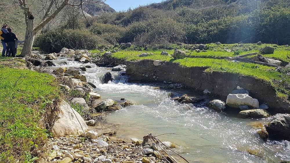 זרימת מים בנחל גוש חלב אחרי הגשמים