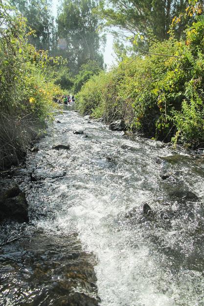 עין תינה טיול מים לילדים בצפון
