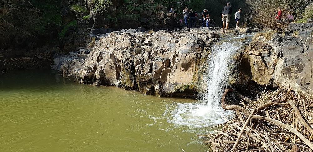 טיול פריחה ומים בנחל תבור, אחת הבריכות בנחל