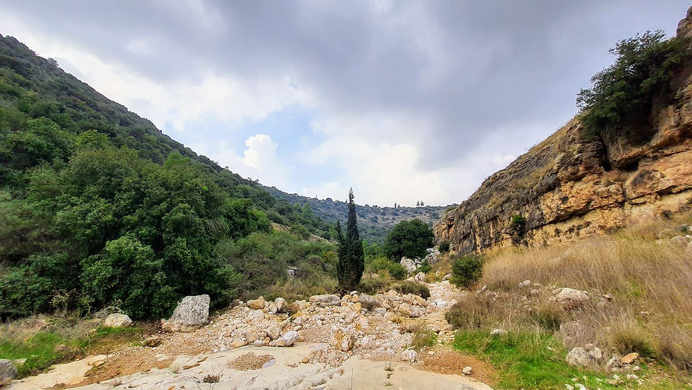 נוף בנחל כפירה בהרי ירושלים
