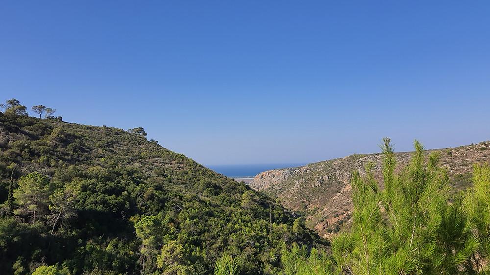נוף בפארק הכרמל לכיוון הים