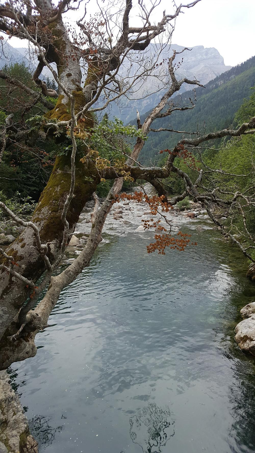 נהר והרים בפארק אורדסה בפירינאים