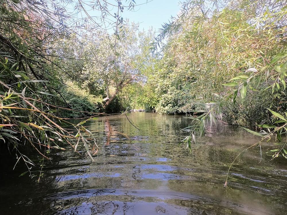 טיול מים בנחל הזאכי
