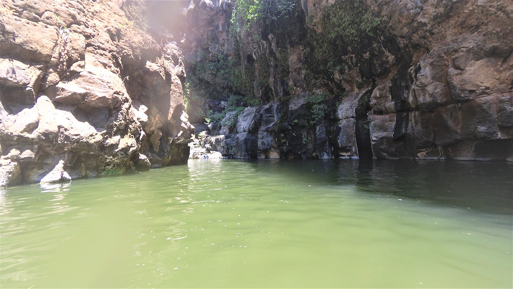 בריכה אופיינת מתחת לאחד המפלים בנחל זויתן