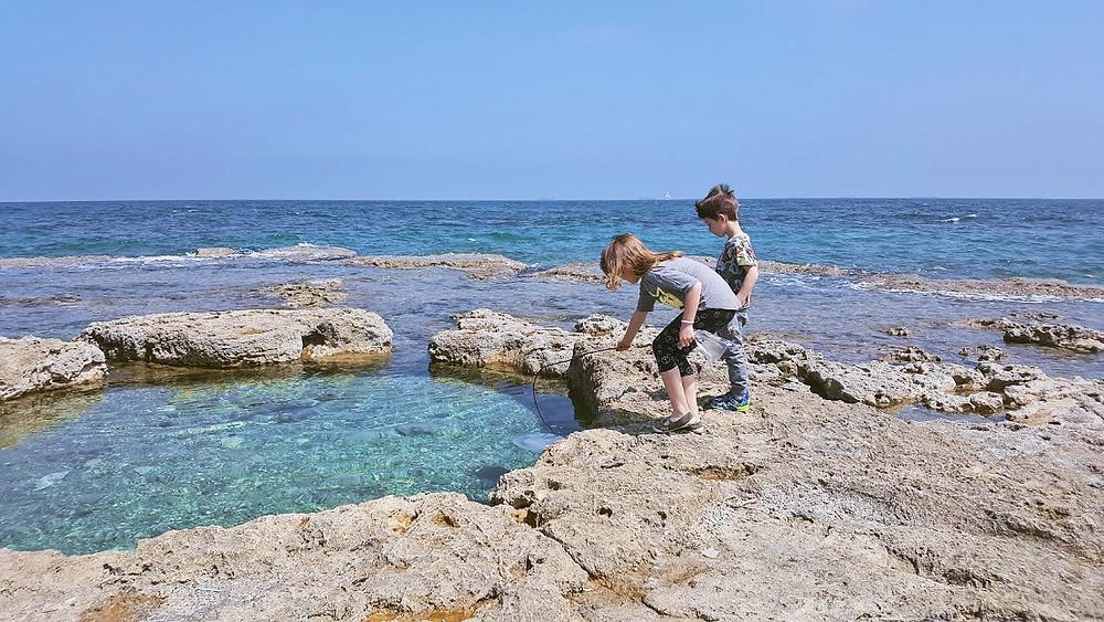 חוף שיקמונה בחיפה