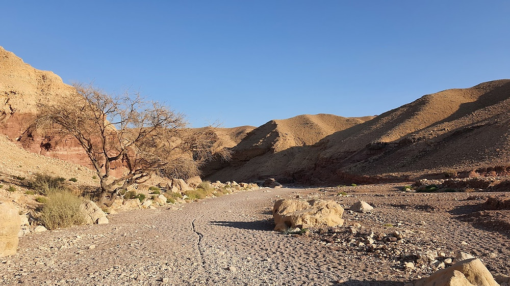 תחילת המסלול בקניון האדום ליד אילת