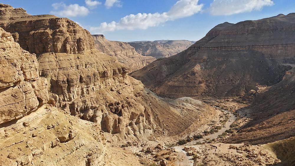 """נוף מדברי מתצפית מעלה פלמ""""ח בנגב"""