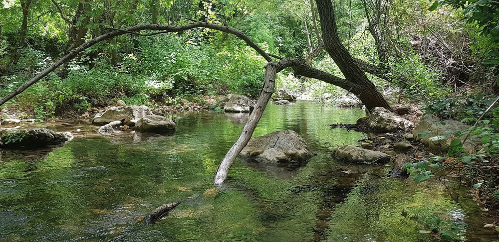 מסלולי טיול משפחתי עם מים בנחל כזיב בגליל המערבי