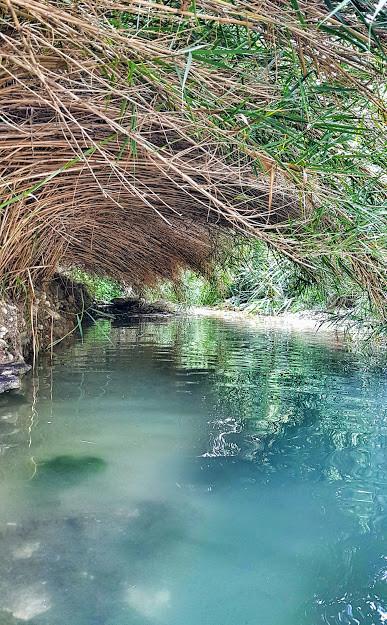 עין אביאל טיול מים במרכז