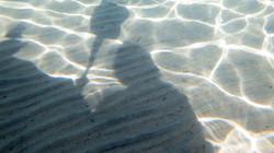Shadow on the lake bottom