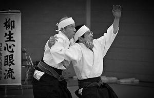 Yagyu Shingan Ryu Taijutsu|Arakido Japan.  http://arakido.renbu.org